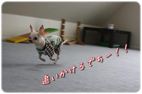 056_20120326195433.jpg