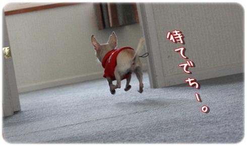 096_20120222194041.jpg