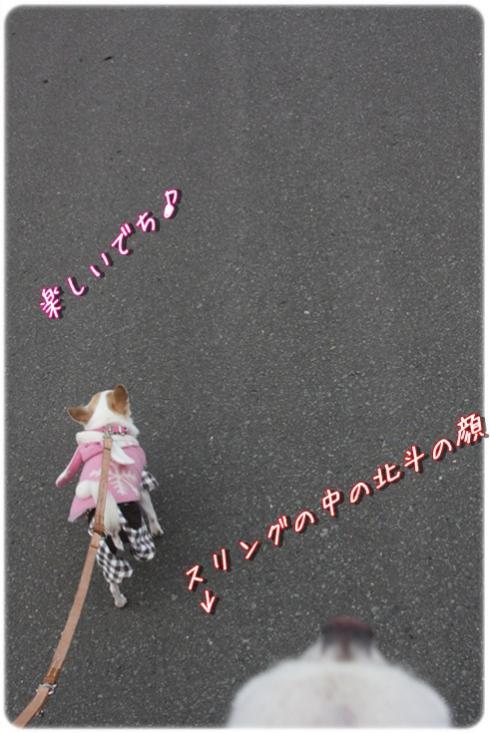 104_20120410193101.jpg