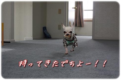 140_20120326195530.jpg