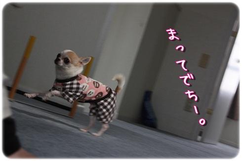211_20120328193709.jpg