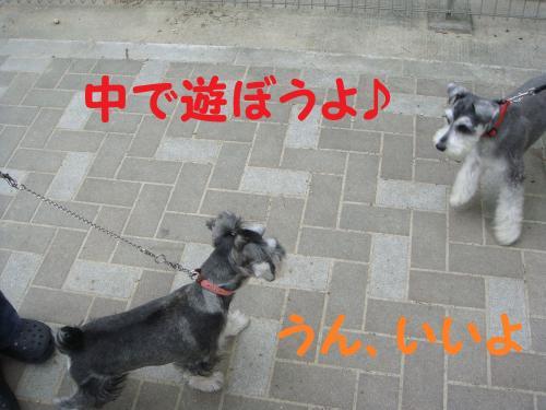 DSC02059(1)_convert_20111006191452.jpg