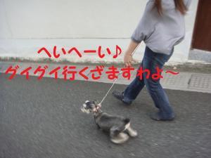 DSC02124(1)_convert_20111006003933.jpg