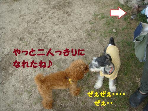 DSC03075(1)_convert_20111029001857.jpg