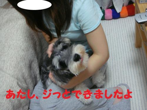 DSC03397(1)_convert_20111030214755.jpg