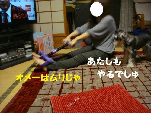 DSC03757(1)_convert_20111109181449.jpg