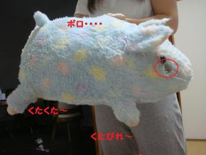DSC03785(1)_convert_20111113000302.jpg
