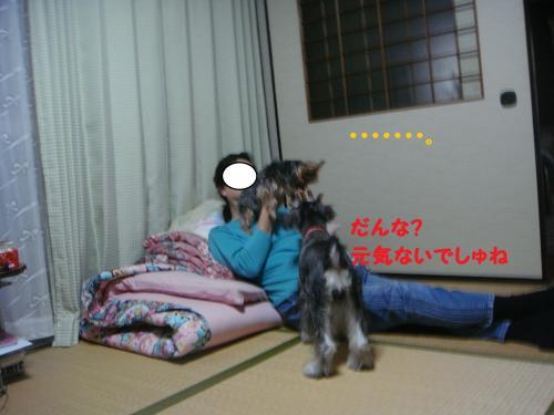 DSC03790(1)_convert_20111113222907.jpg