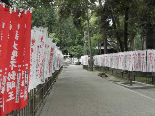 きつね塚への道