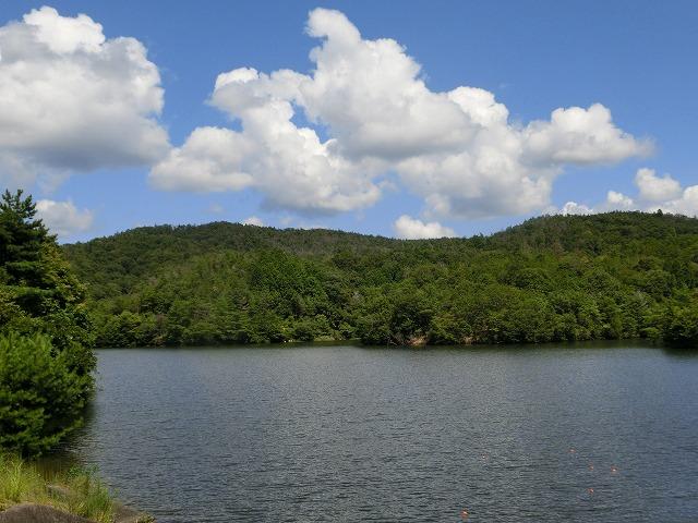 岡山自然保護センター