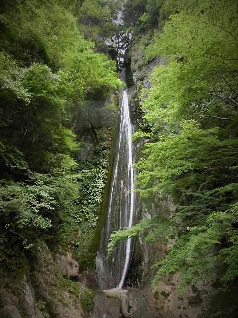 絹掛けの滝1