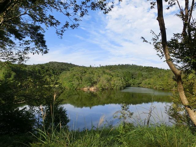 池のある風景