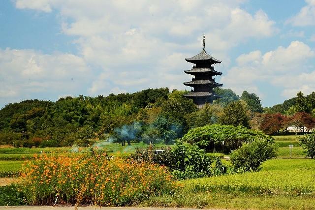 青空の国分寺2