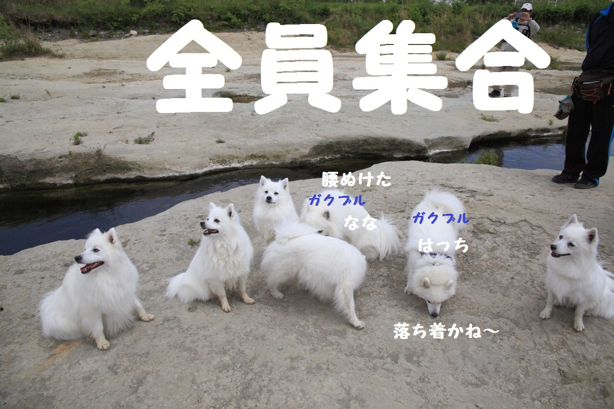 13_20130519204346.jpg