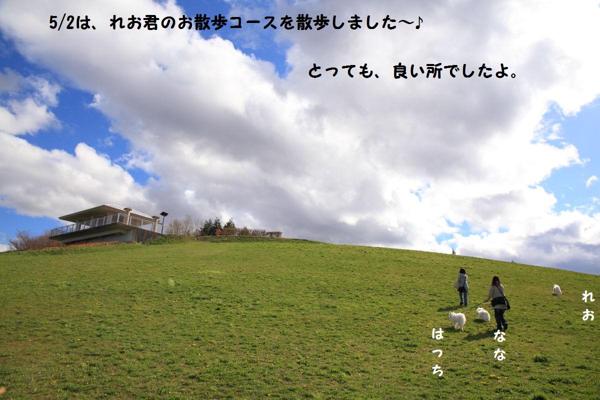 1_20130510211144.jpg