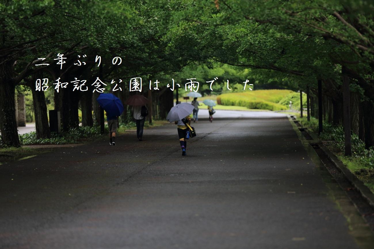 1_20130618194306.jpg