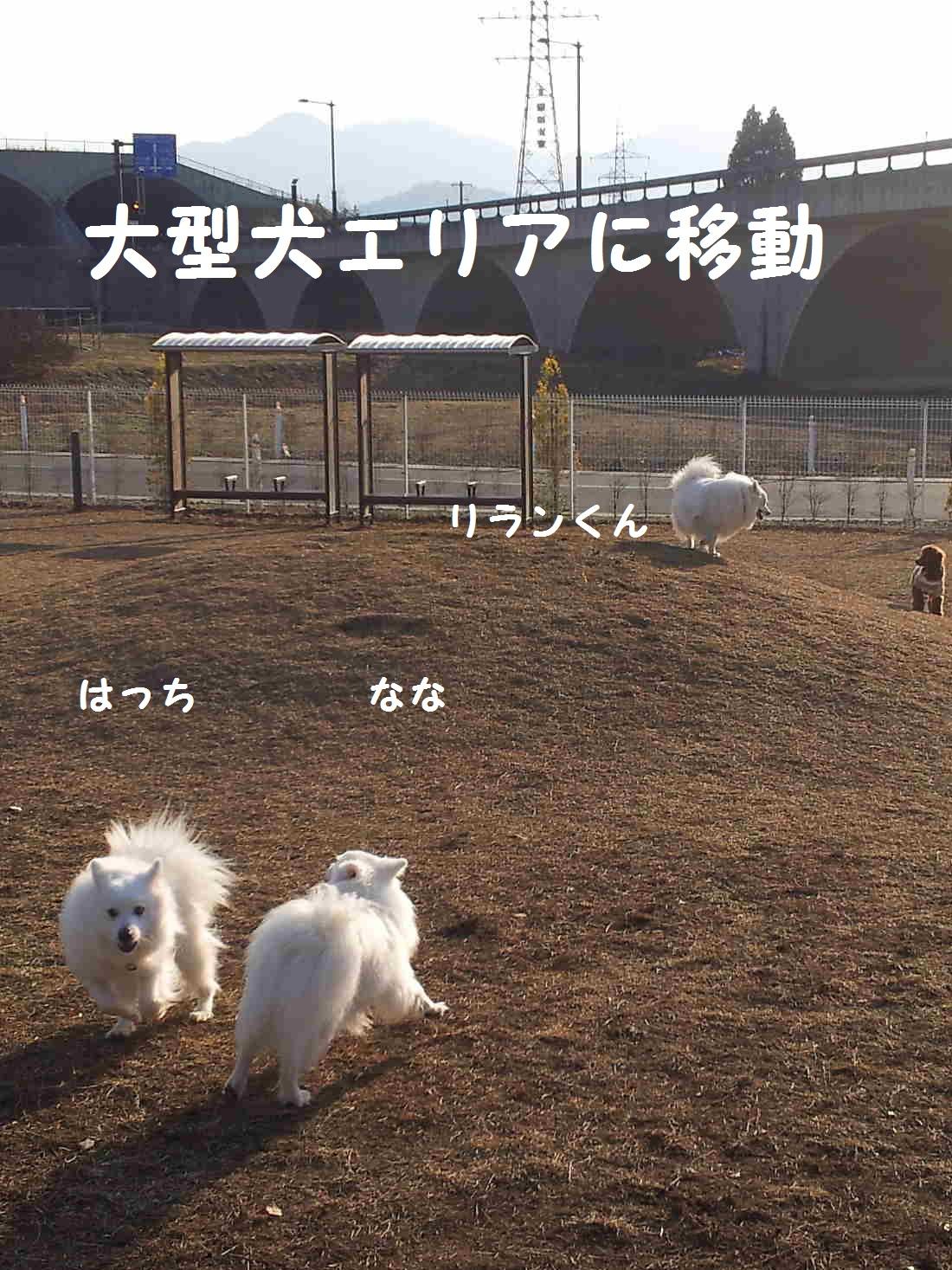 2_20130325202946.jpg