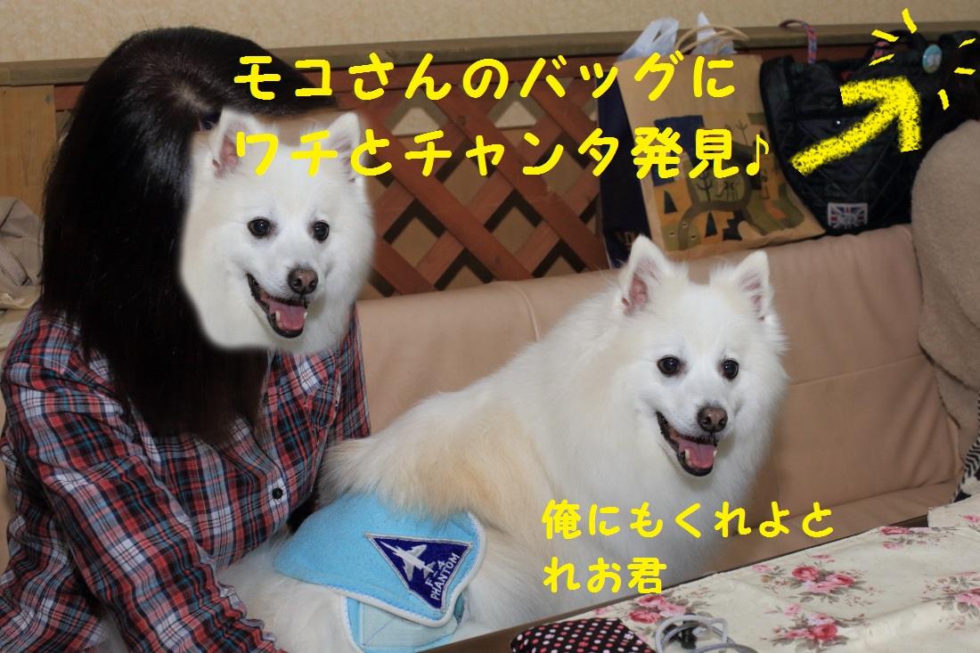 2_20130408200132.jpg