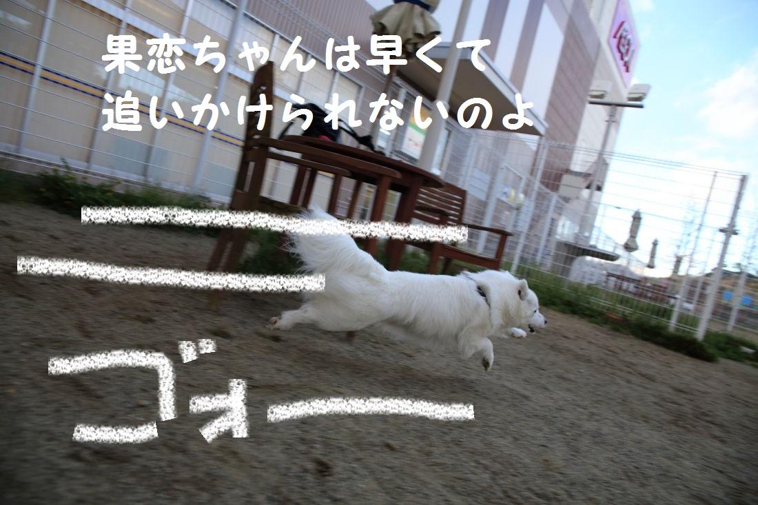 2_20130509205107.jpg