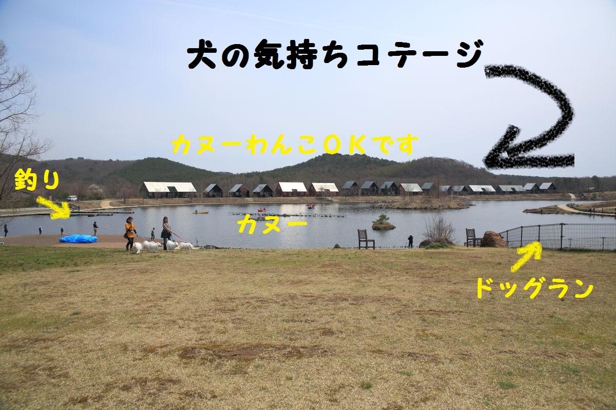 2_20130521190724.jpg