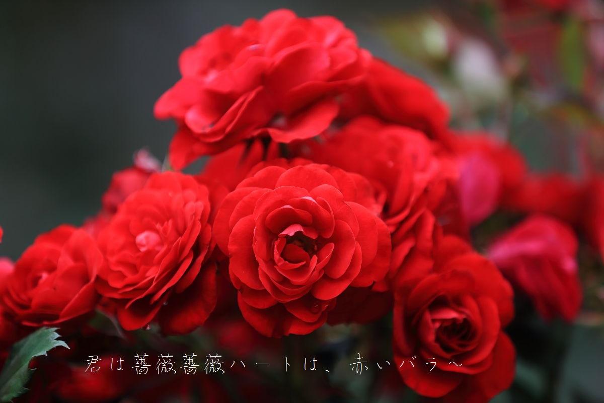2_20130630074850.jpg