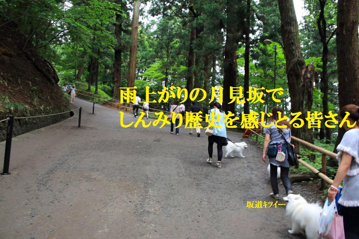 2_20130717203133.jpg