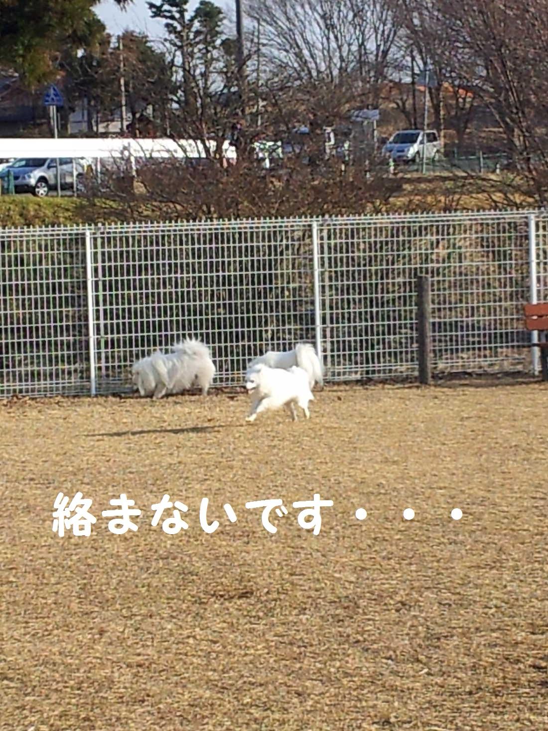 3_20130325202946.jpg