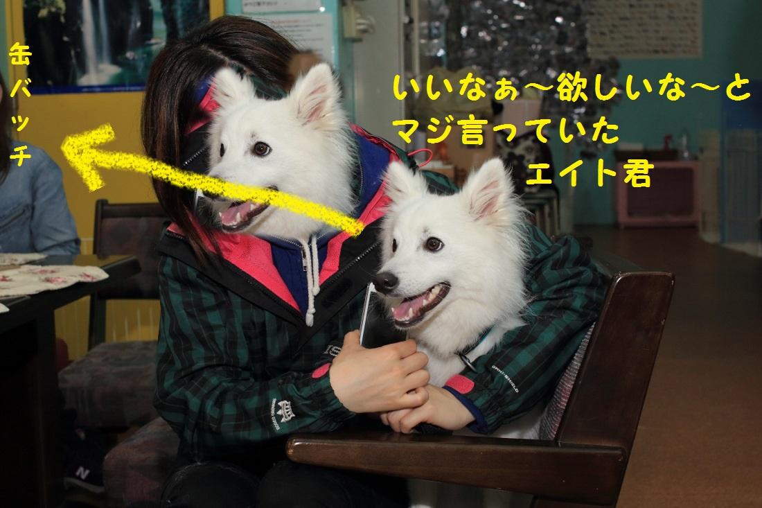 3_20130408200131.jpg