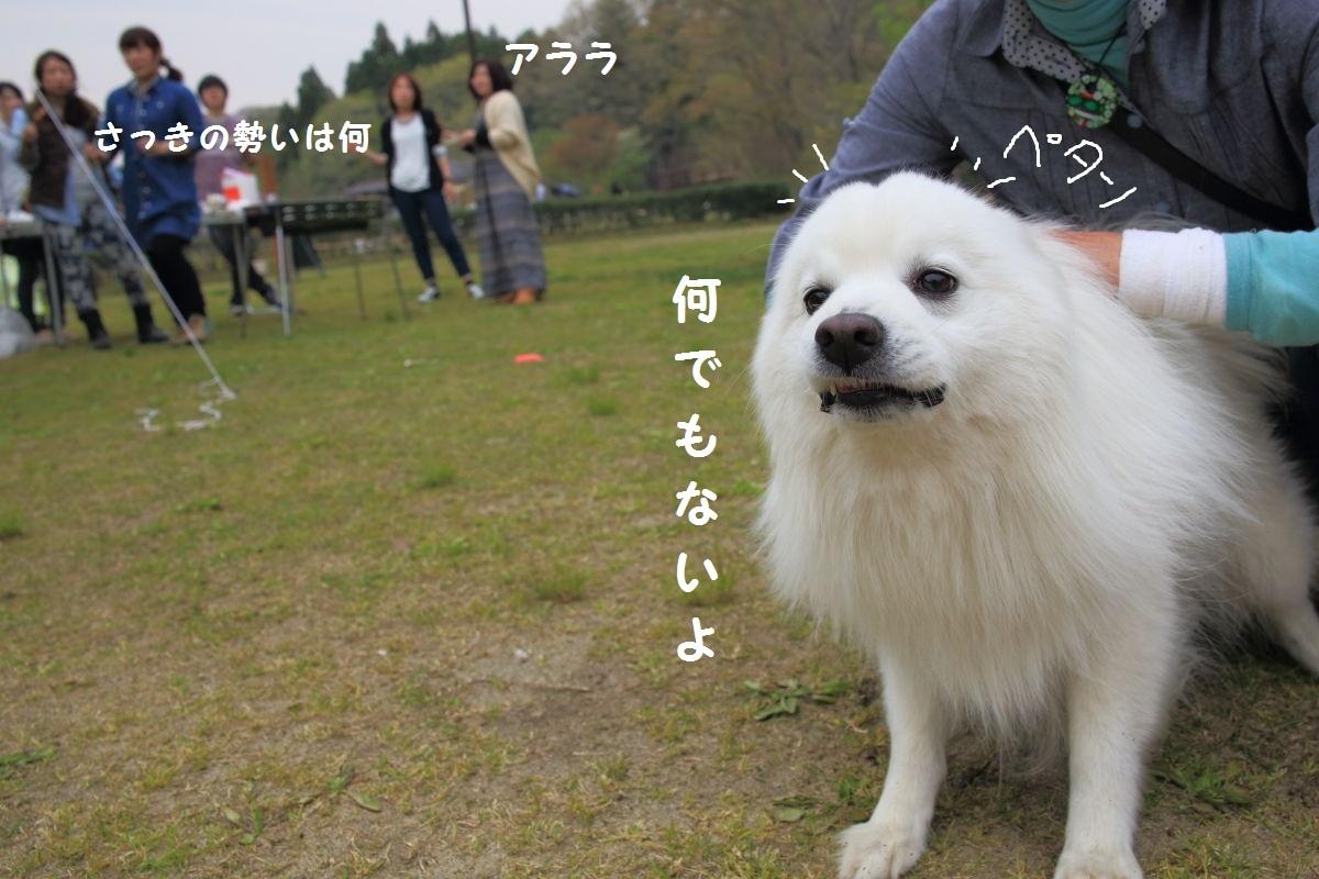 3_20130512204353.jpg