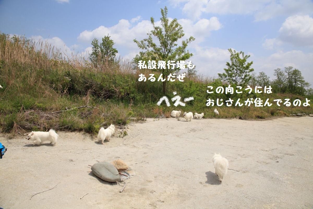 3_20130519204155.jpg