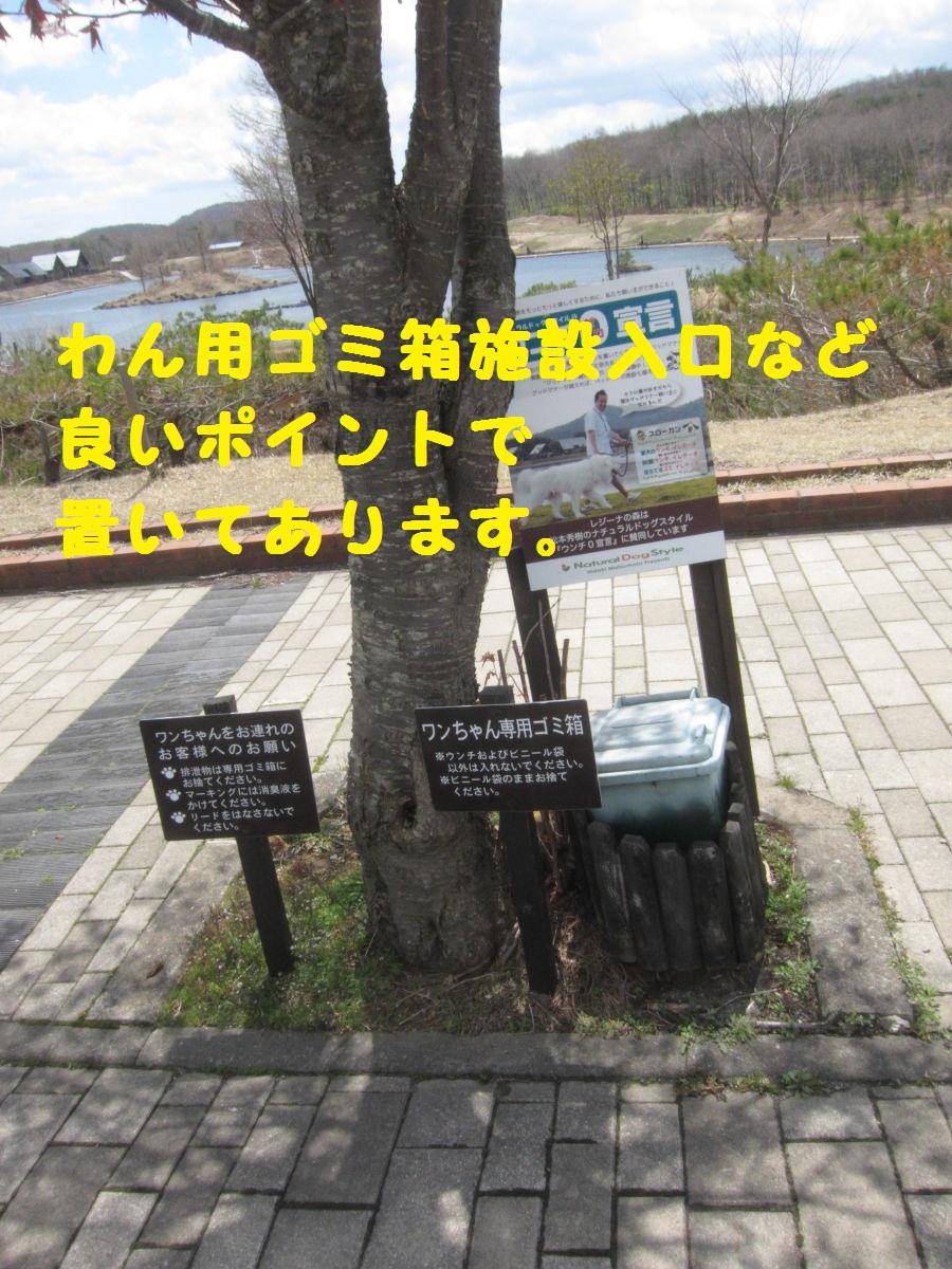 3_20130521190724.jpg