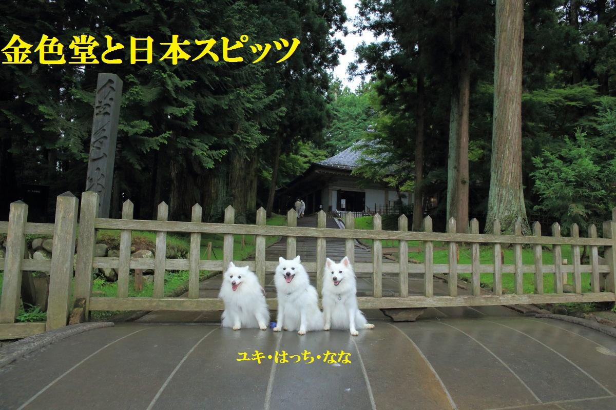 3_20130717203132.jpg