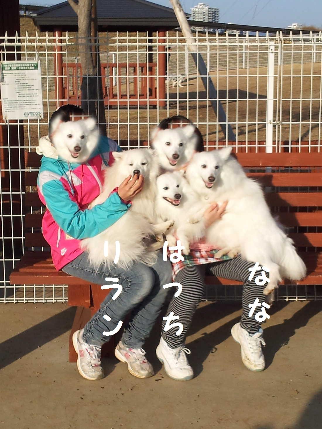 4_20130325202946.jpg