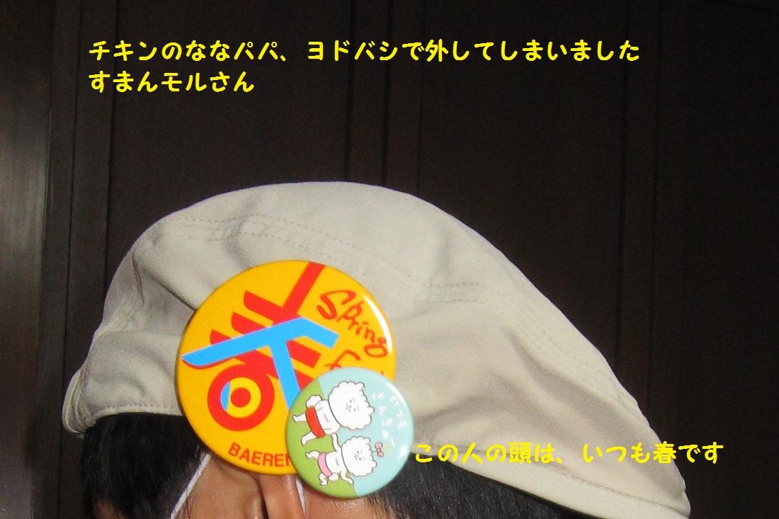 4_20130408200131.jpg
