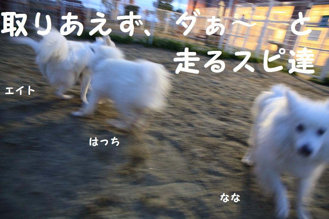 4_20130509205106.jpg