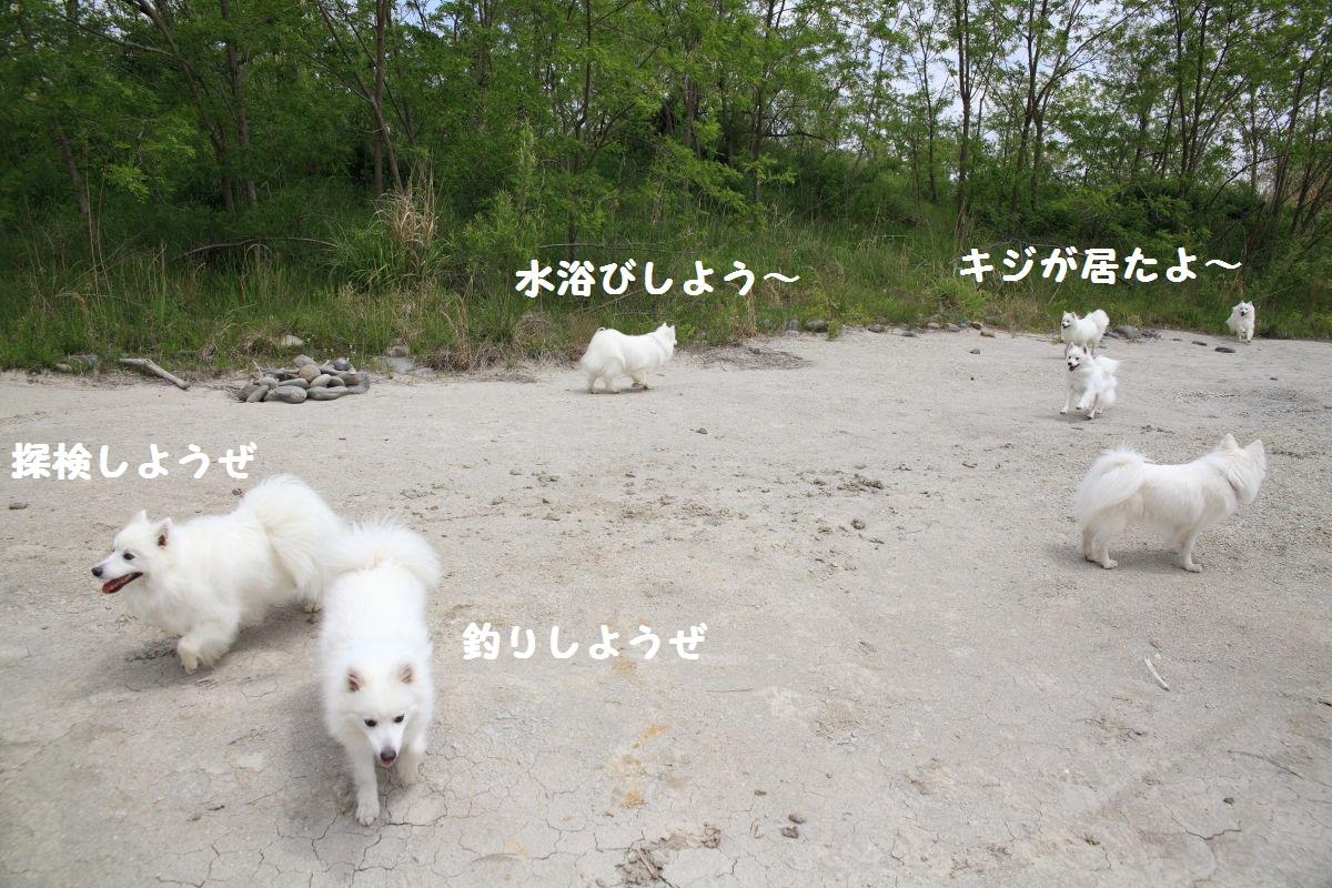 4_20130519204155.jpg