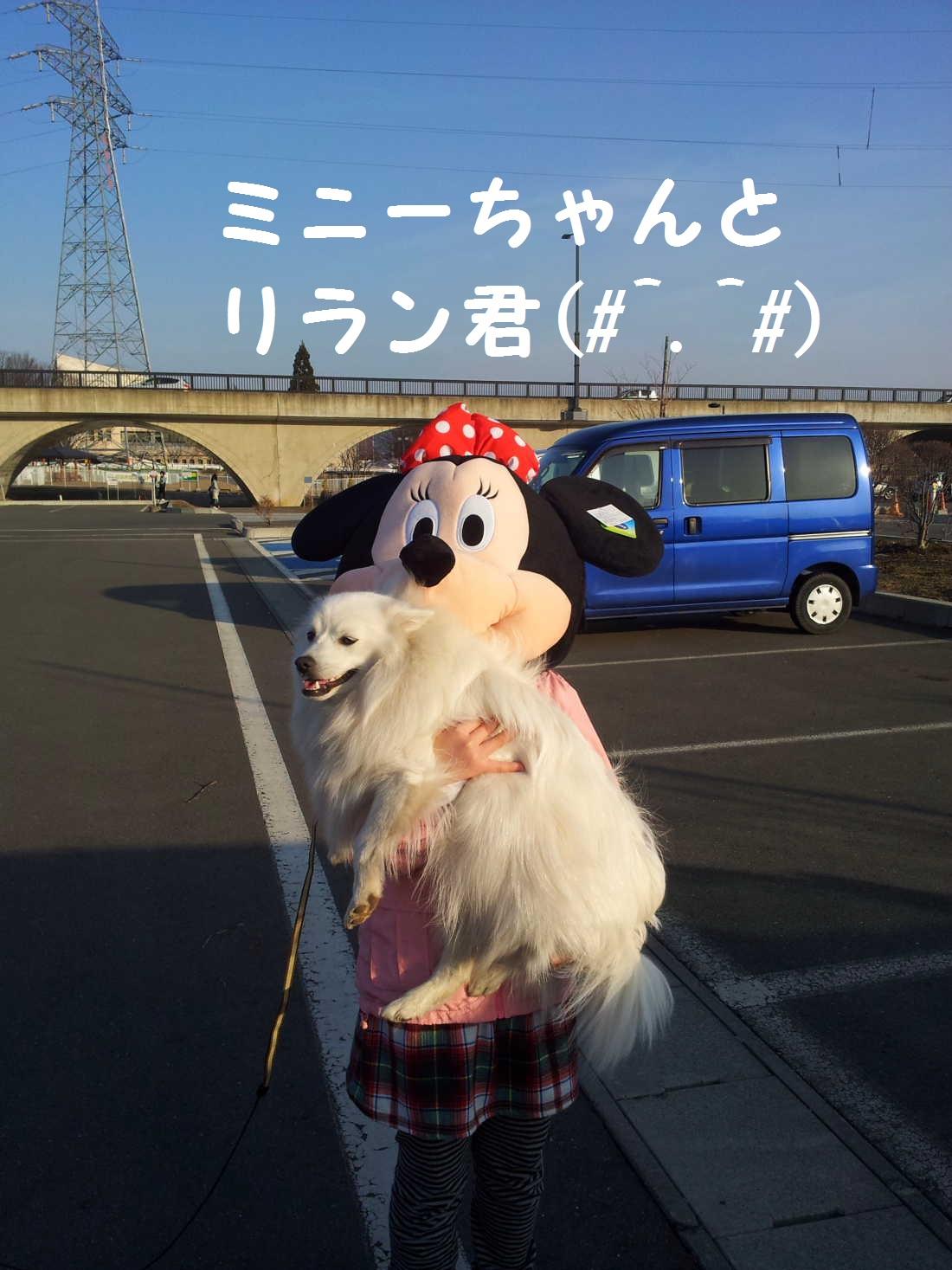 5_20130325202946.jpg