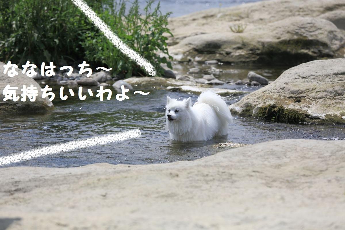 6_20130519204154.jpg