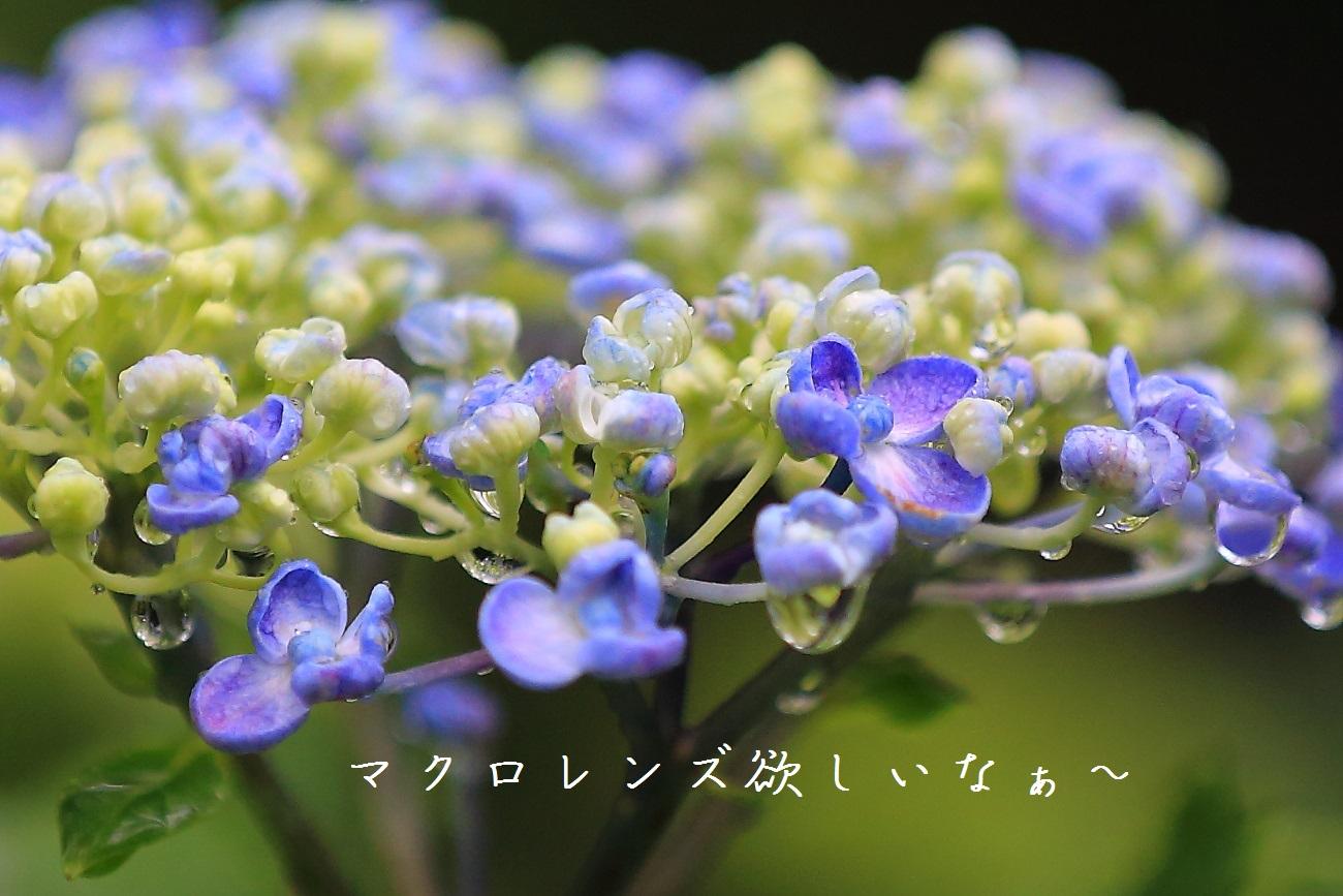 6_20130618194301.jpg