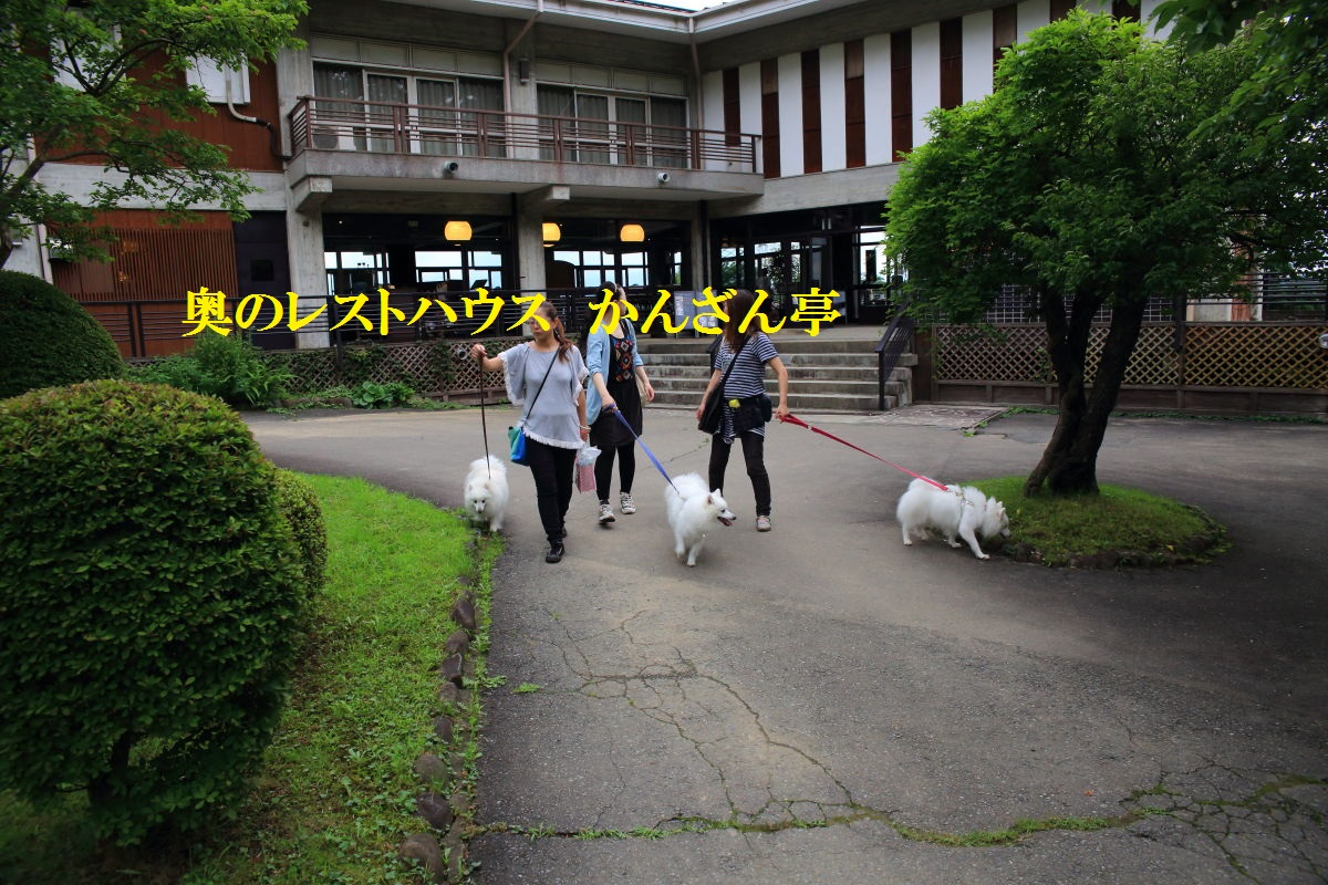 6_20130717203252.jpg