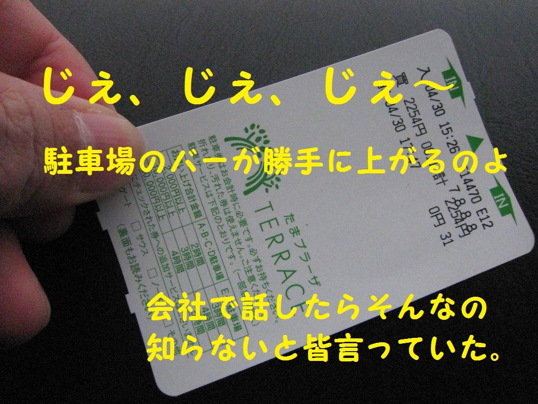 8_20130508182918.jpg
