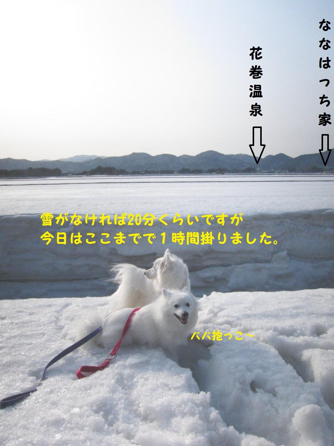 DPP_0520.jpg