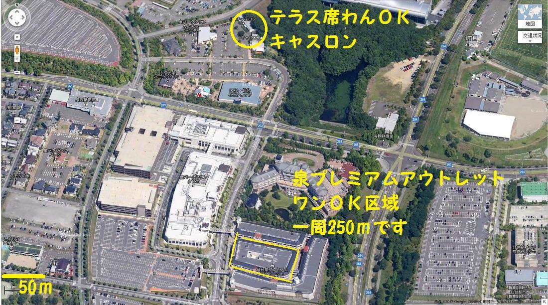 DPP_0585.jpg