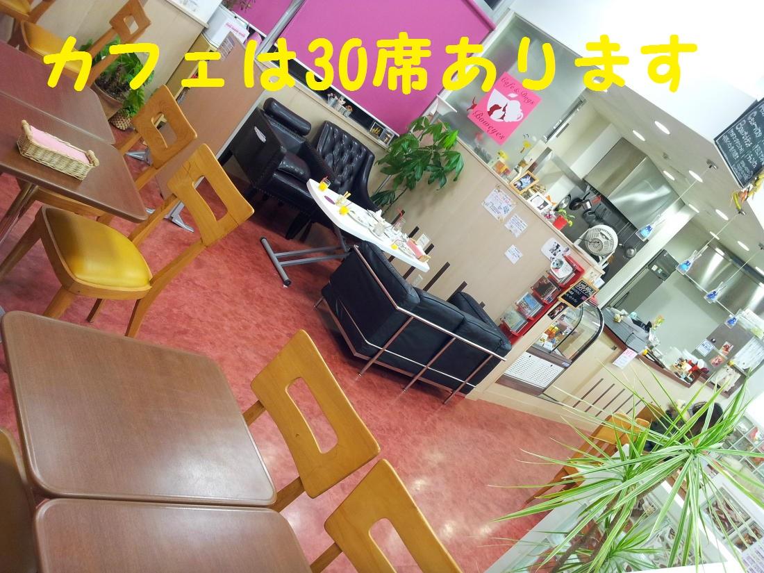 DPP_0589.jpg