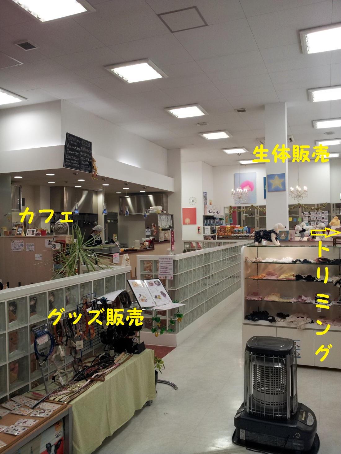 DPP_0596.jpg