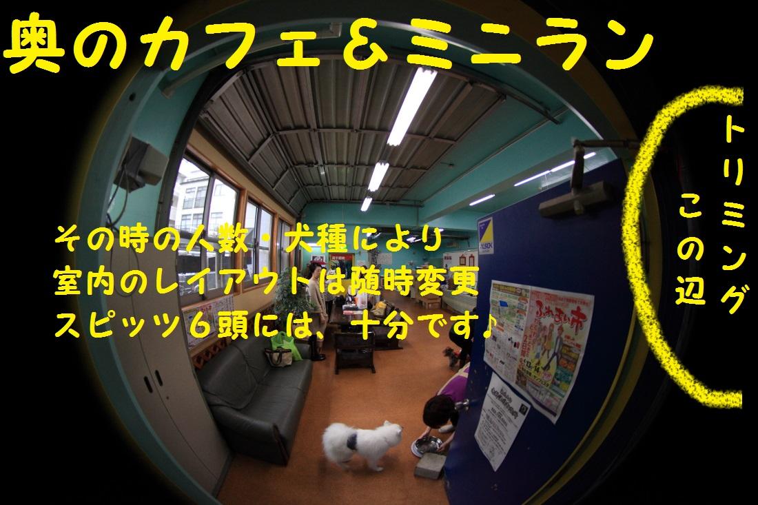 DPP_0684.jpg