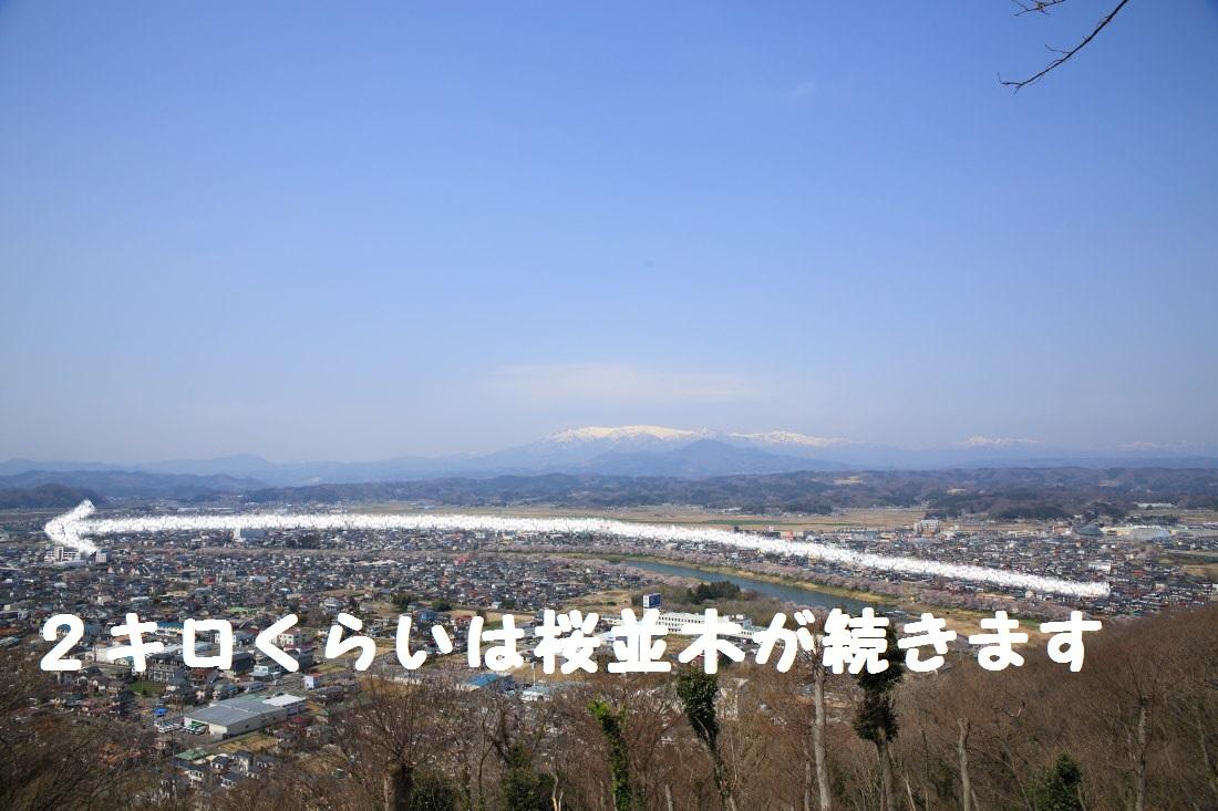 DPP_0749.jpg