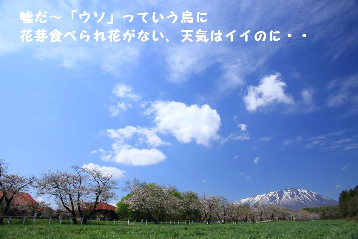 DPP_2126.jpg
