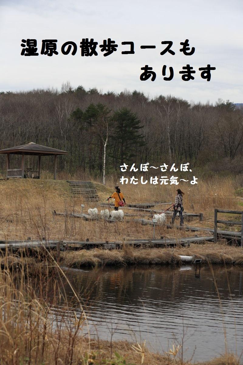 DPP_2236.jpg
