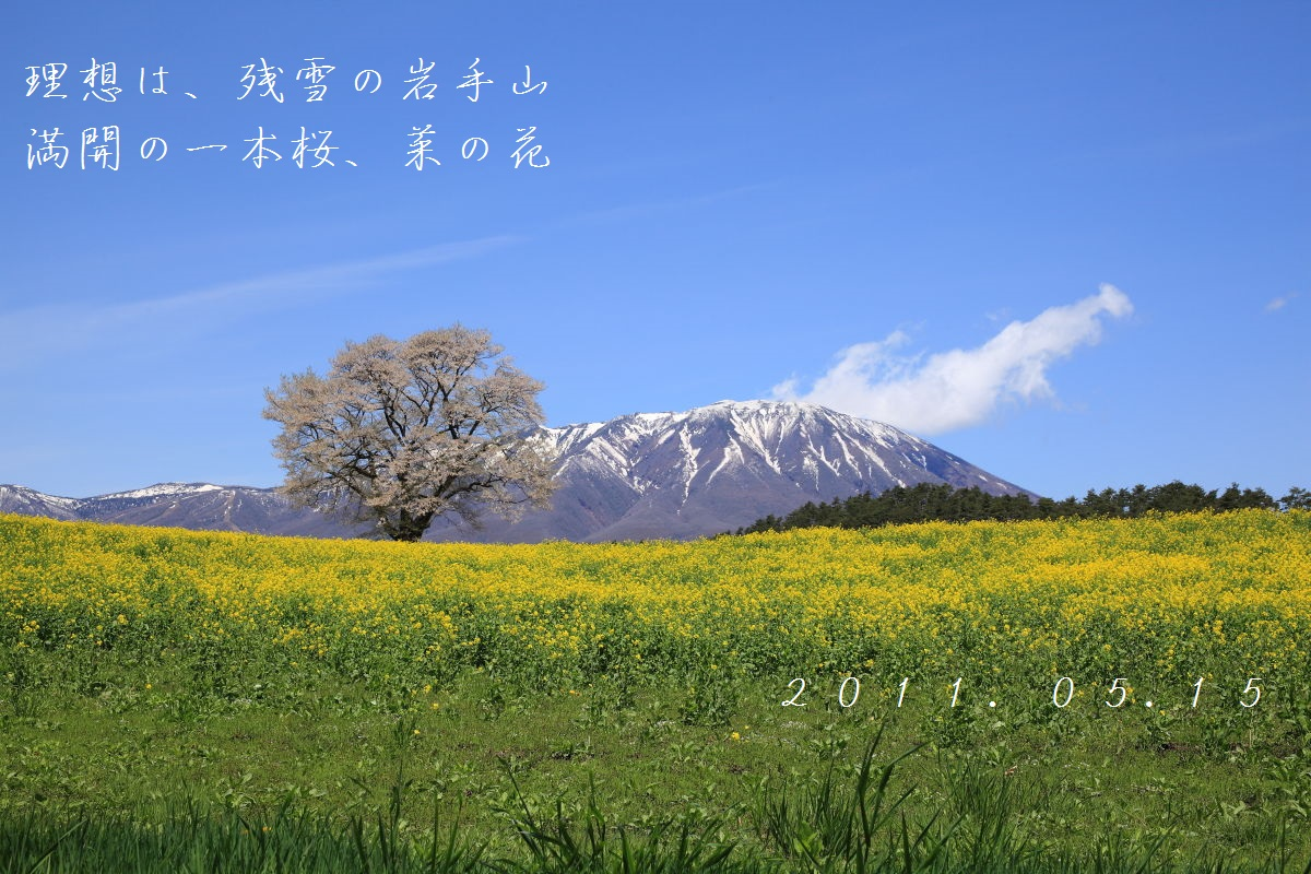 DPP_2339.jpg